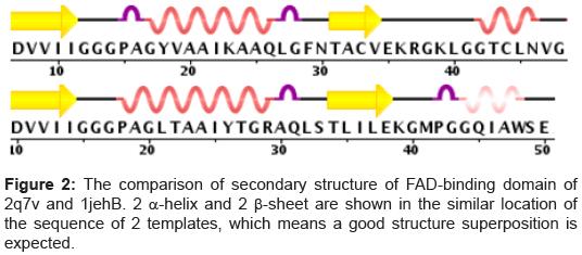 data-mining-genomics-comparison-secondary-structure