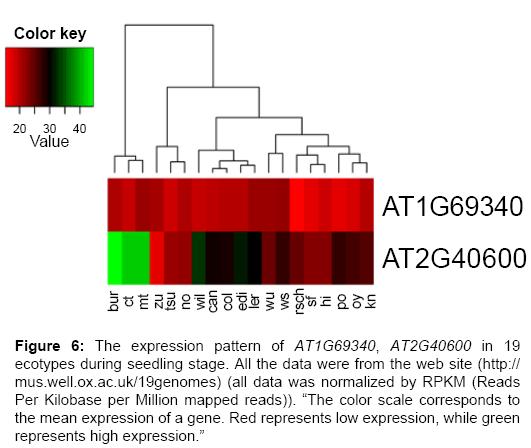 data-mining-genomics-ecotypes-during-seedling-stage