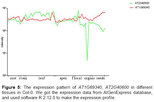 data-mining-genomics-expression-pattern