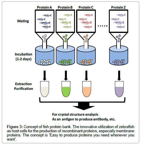 data-mining-genomics-fish-protein-bank