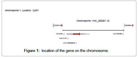 data-mining-genomics-gene-chromosome