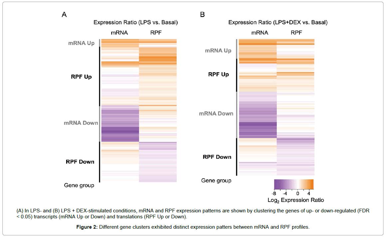 data-mining-genomics-gene-clusters