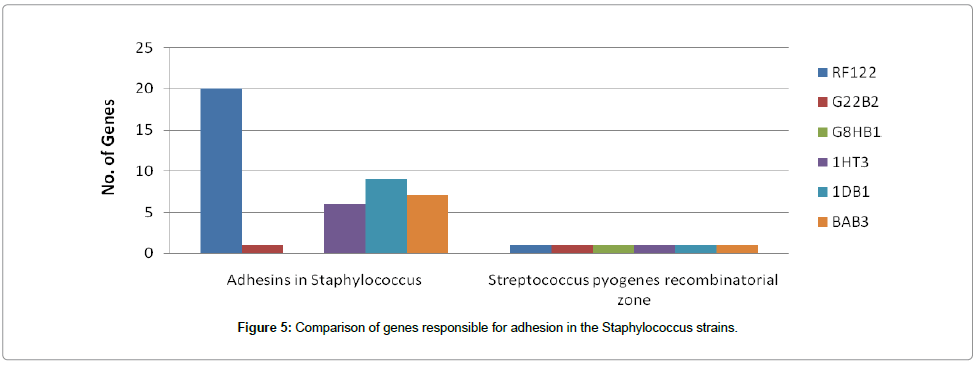 data-mining-genomics-genes-adhesion