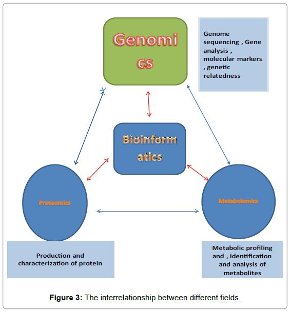 data-mining-genomics-interrelationship