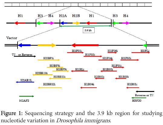 data-mining-genomics-proteomics-Sequencing-strategy