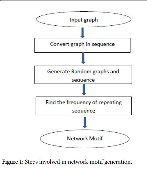 data-mining-in-genomics-proteomics-network-motif