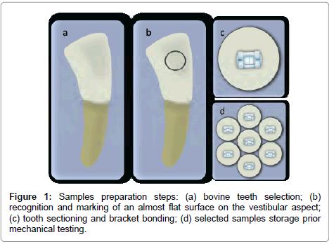 dentistry-Samples-preparation