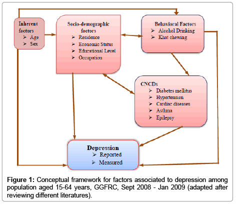 depression-and-anxiety-Conceptual-framework