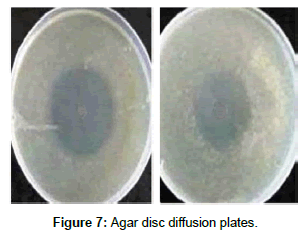 developing-drugs-diffusion-plates