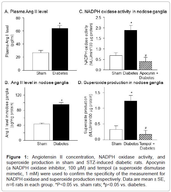 diabetes-metabolism-Angiotensin-II