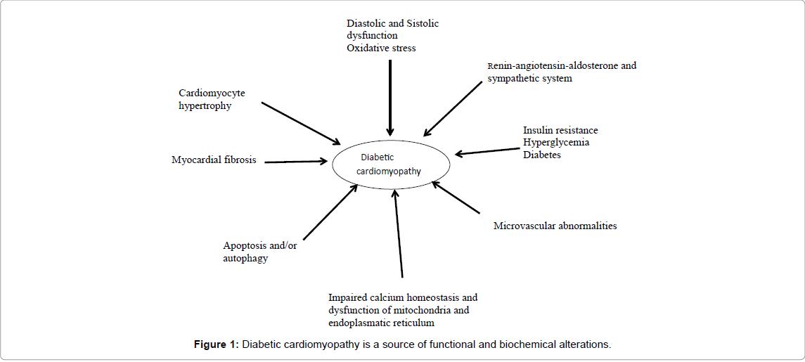 diabetes-metabolism-Diabetic-cardiomyopathy