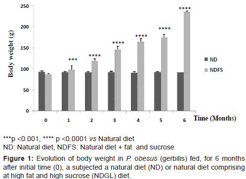 diabetes-metabolism-Evolution-body-weight