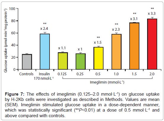 diabetes-metabolism-Imeglimin-stimulated
