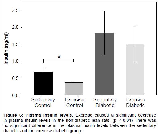 diabetes-metabolism-Plasma-insulin-levels