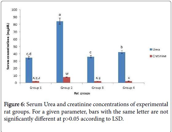 diabetes-metabolism-Serum-Urea