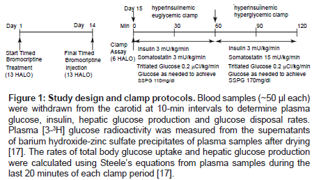 diabetes-metabolism-Study-design-clamp-protocols