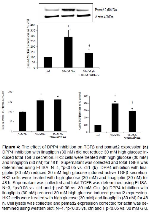 diabetes-metabolism-Supernatant-collected-total