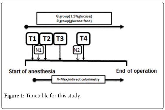 diabetes-metabolism-Timetable-study