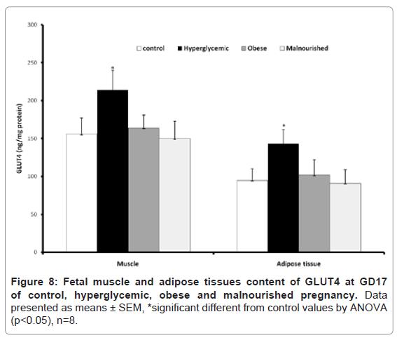 diabetes-metabolism-adipose-tissues-content