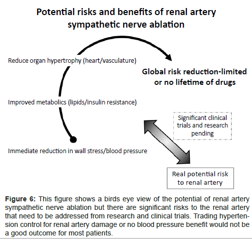 diabetes-metabolism-birds-eye-view-potential