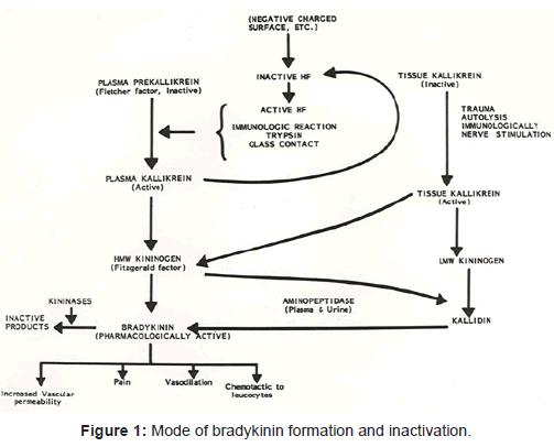 diabetes-metabolism-bradykinin-formation-inactivation