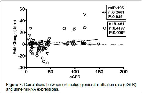 diabetes-metabolism-estimated-glomerular