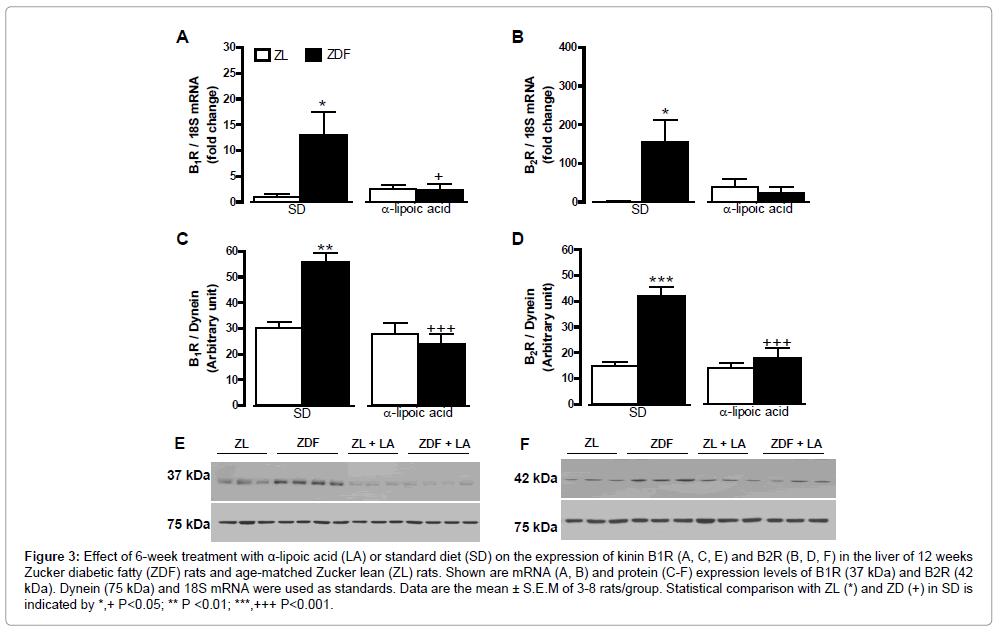 diabetes-metabolism-expression-of-kinin