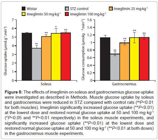 diabetes-metabolism-gastrocnemius-glucose
