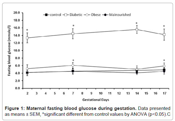 diabetes-metabolism-glucose-during-gestation