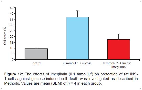 diabetes-metabolism-glucose-induced