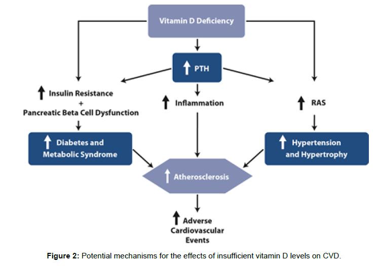 diabetes-metabolism-insufficient-vitamin-D