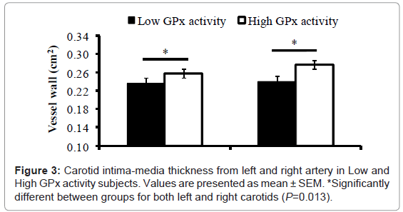 diabetes-metabolism-intima-media