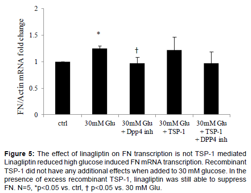 diabetes-metabolism-linagliptin-FN-transcription