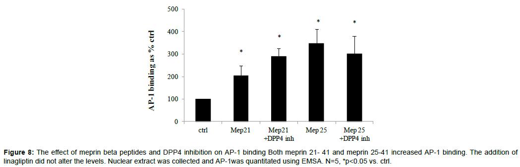 diabetes-metabolism-meprin-beta-peptides