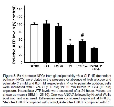 diabetes-metabolism-palmitate-addition