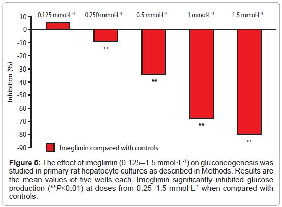 diabetes-metabolism-primary-hepatocyte