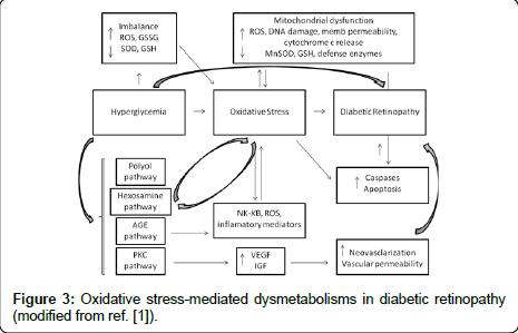 diabetes-metabolism-stress-mediated