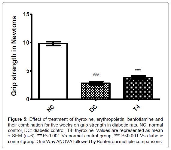 diabetes-metabolism-thyroxine-erythropoietin-benfotiamine