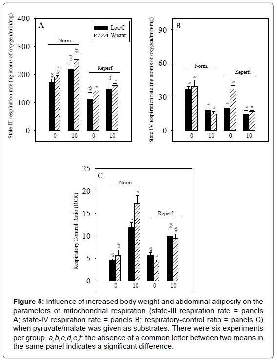 diabetes-metabolism-weight-abdominal-adiposity