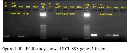 diagnostic-pathology-PCR-study-showed