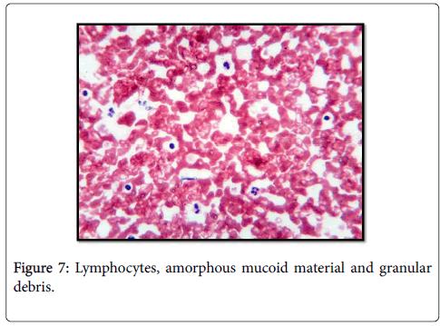 diagnostic-pathology-granular-debris
