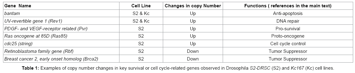 down-syndrome-cell-cycle-related