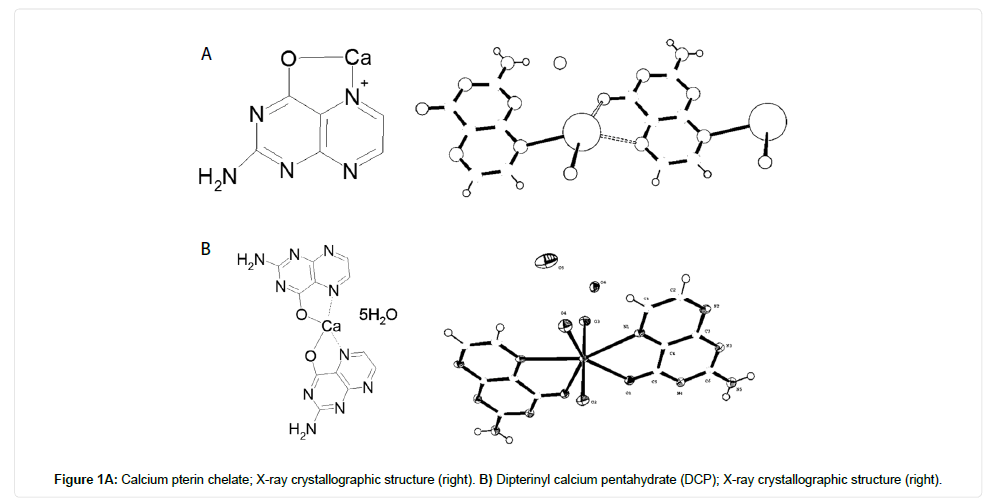 drug-designing-crystallographic-structure