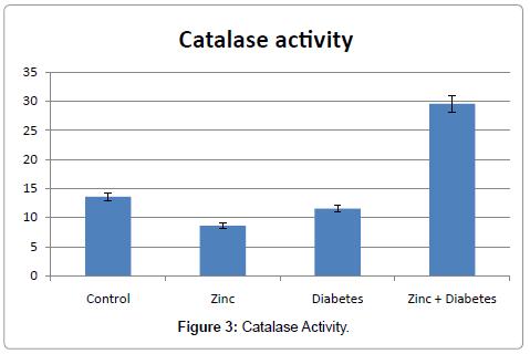 drug-metabolism-toxicology-Catalase