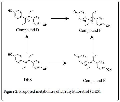 drug-metabolism-toxicology-Diethylstilbestrol