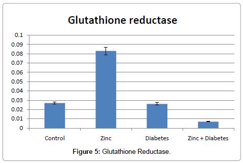 drug-metabolism-toxicology-Glutathione-Reductase