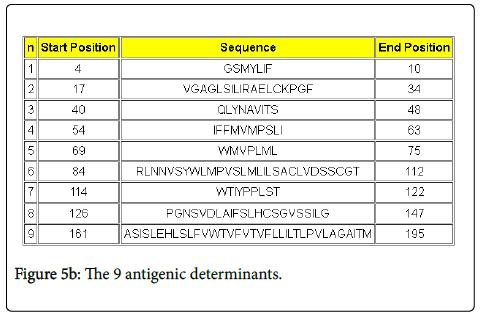 drug-metabolism-toxicology-antigenic