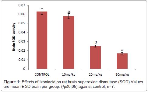 drug-metabolism-toxicology-brain