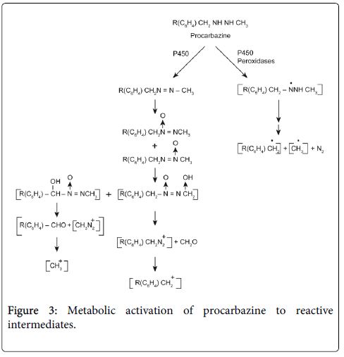 drug-metabolism-toxicology-reactive