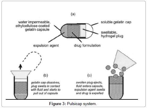 drug-metabolism-toxicology-system